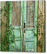 Green Cottage Doors Canvas Print