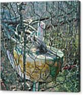 Green Crabbing Basket Canvas Print