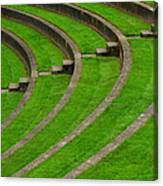 Green Curves And Steps Canvas Print