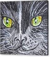 Green Eyes Black Cat Canvas Print
