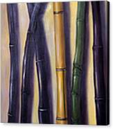 Green Gold And Black Bamboo Canvas Print