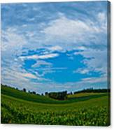 Green Grass Grows All Around Canvas Print