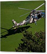 Green Grass Landing  Canvas Print