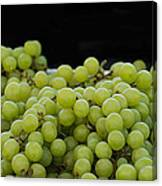 Green Green Grapes Canvas Print