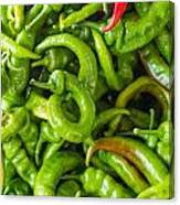 Green Hot Peppers Canvas Print