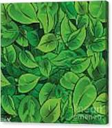 Green Leaves - V1 Canvas Print