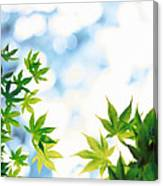 Green Leaves On Mottled Cloudy Sky Canvas Print