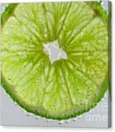 Green Lime In Tonic Water Canvas Print