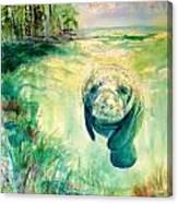 Green Manatee Canvas Print
