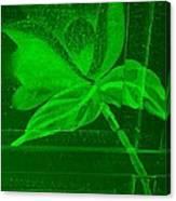 Green Negative Wood Flower Canvas Print