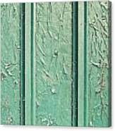 Green Painted Wood Canvas Print