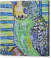 Green Parakeet Canvas Print