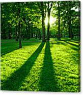 Green Park Canvas Print