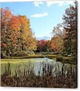 Green Pond Canvas Print
