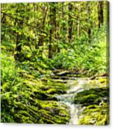 Green River No2 Canvas Print