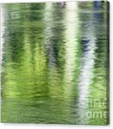 Green River Reflections Canvas Print