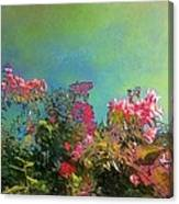 Green Sky With Pink Bougainvillea - Square Canvas Print