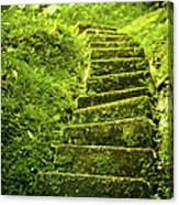 Green Stair Canvas Print