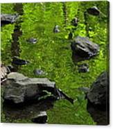 Green Stream Canvas Print