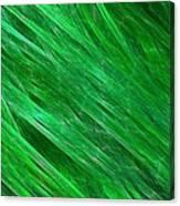 Green Streaming Canvas Print