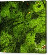 Green Surface Canvas Print