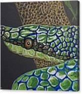 Green Tree Snake Canvas Print