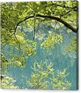 Green Trees Over Blue Water Canvas Print