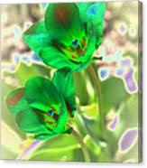 Green Tulips Canvas Print
