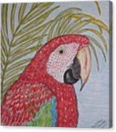Green Winged Macaw Canvas Print