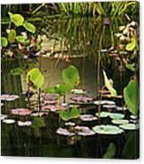 Greens On A Pond 2 Canvas Print