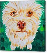 Gremlin Canvas Print