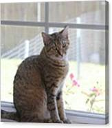 Gretchen Sitting In The Window Canvas Print