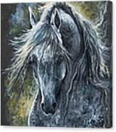 Grey Arabian Horse Oil Painting 2 Canvas Print