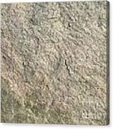 Grey Rock Texture Canvas Print