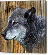 Grey Wolf On Wood Canvas Print