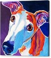 Greyhound - Halle Canvas Print