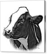 Greyscale Cow Holstein - 0034 Fs Canvas Print