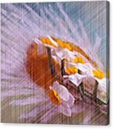 Grid Above Flowers Canvas Print