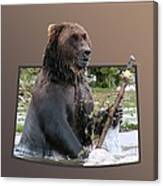 Grizzly Bear 6 Out Of Bounds Canvas Print