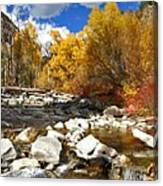 Grizzly Creek Canyon Canvas Print