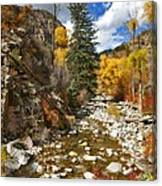 Grizzly Creek Cottonwoods Vertical Canvas Print