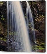 Grotto Falls Tennessee Canvas Print