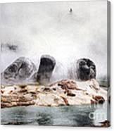 Grotto Geyser Yellowstone National Park Canvas Print
