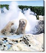 Grotto Geyser Yellowstone Np Canvas Print