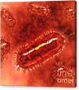 Group Of Escherichia Coli Bacteria Canvas Print