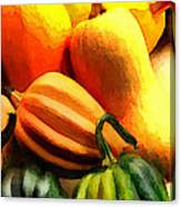 Group Of Gourds Canvas Print