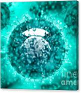 Group Of H5n1 Virus With Glassy View Canvas Print