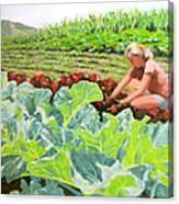 Growing Hope Canvas Print