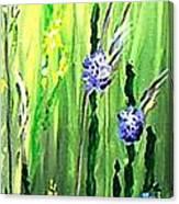 Growing Wild 2 Canvas Print
