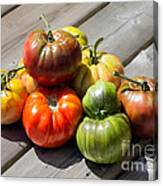 Grown From Seeds Canvas Print